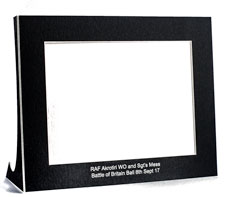 White Picture Mount Strut
