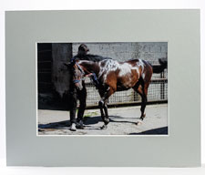 Pale Grey Picture Mount